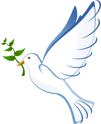 Friedenstaube Gebet